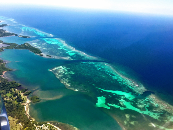 Reef view from plane